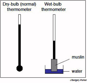 relationship between wet bulb and dry temperature wikipedia