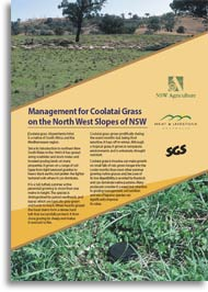Coolatai grass document cover