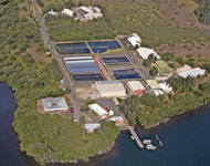 Port Stephens Fisheries Institute from the air