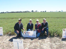 Launching the latest chickpea variety