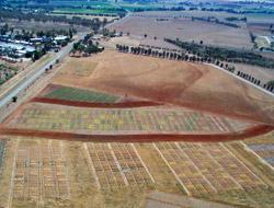 Aerial view of paddocks at TAI