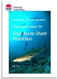 Discussion paper for Grey Nurse Shark Protection