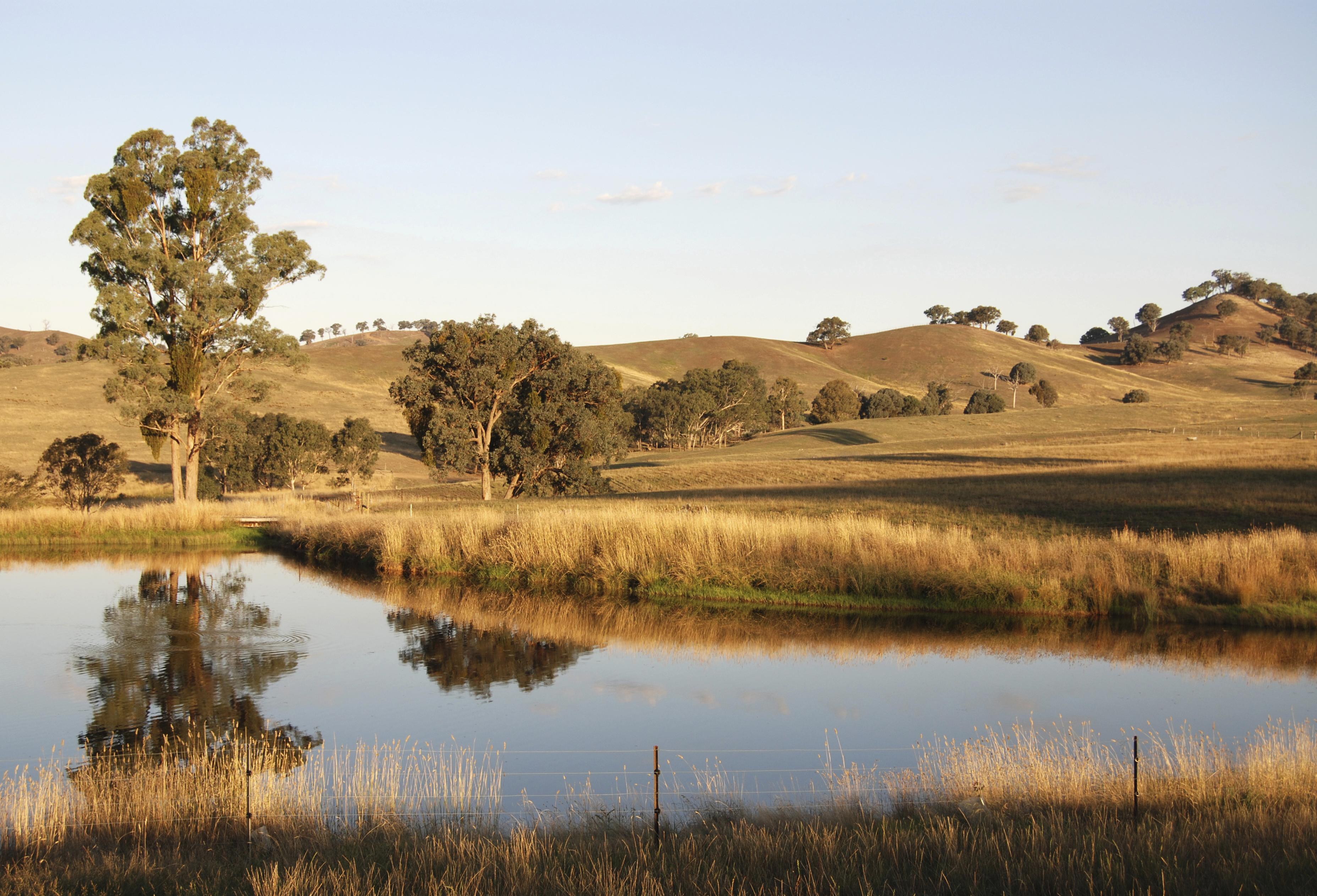 Drought sky yellow farmland