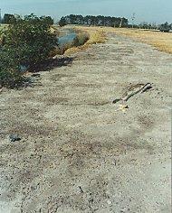 acid sulfate soil damage