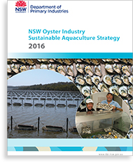 Cover of the oyster strategy