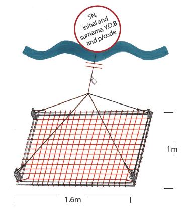 Spanner crab net