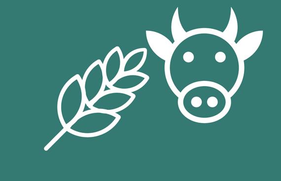 animal feed testing icon