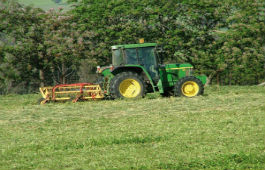 Mowing for hay silage