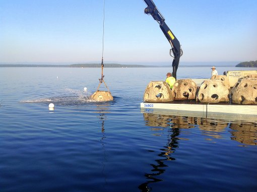 Artificial reef deployed