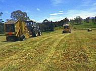 Cutting fodder