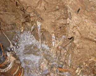 Figure 1. Acid groundwater flowing through large soil pores rapidly filling an excavated pit. While this acid sulfate soil has a clay texture, it has high permeability due to many large, interconnected pores and cracks (Photo: Thor Aaso)
