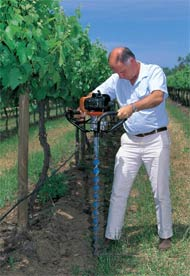 Testing soil in a vineyard