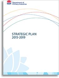 Cover image of the strategic plan.