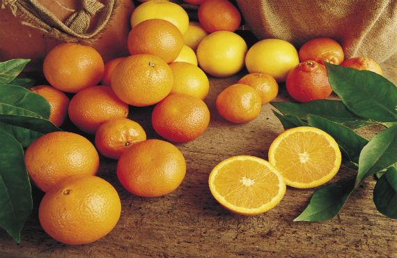 Sunraysia citrus growers