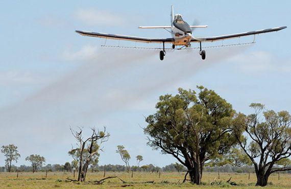 Aerial spraying of locusts near Bourke