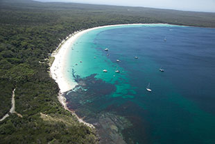 Hare Bay by Jervis Bay Tourism