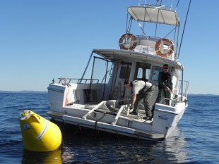 Fisheries patrol vessel and a Fish Attraction Device (FAD)