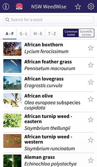 NSW WeedWise App homepage