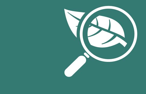 plant health testing icon