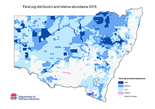 Distribution Map 2016 Feral Pig Distribution