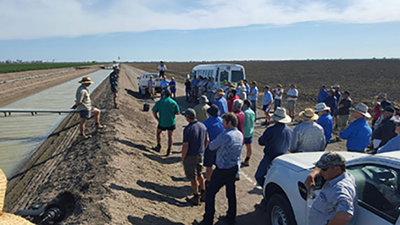 Participants are standing around an irrigation drain listening to how it works.
