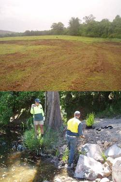 The clean site area and planting the river banks.