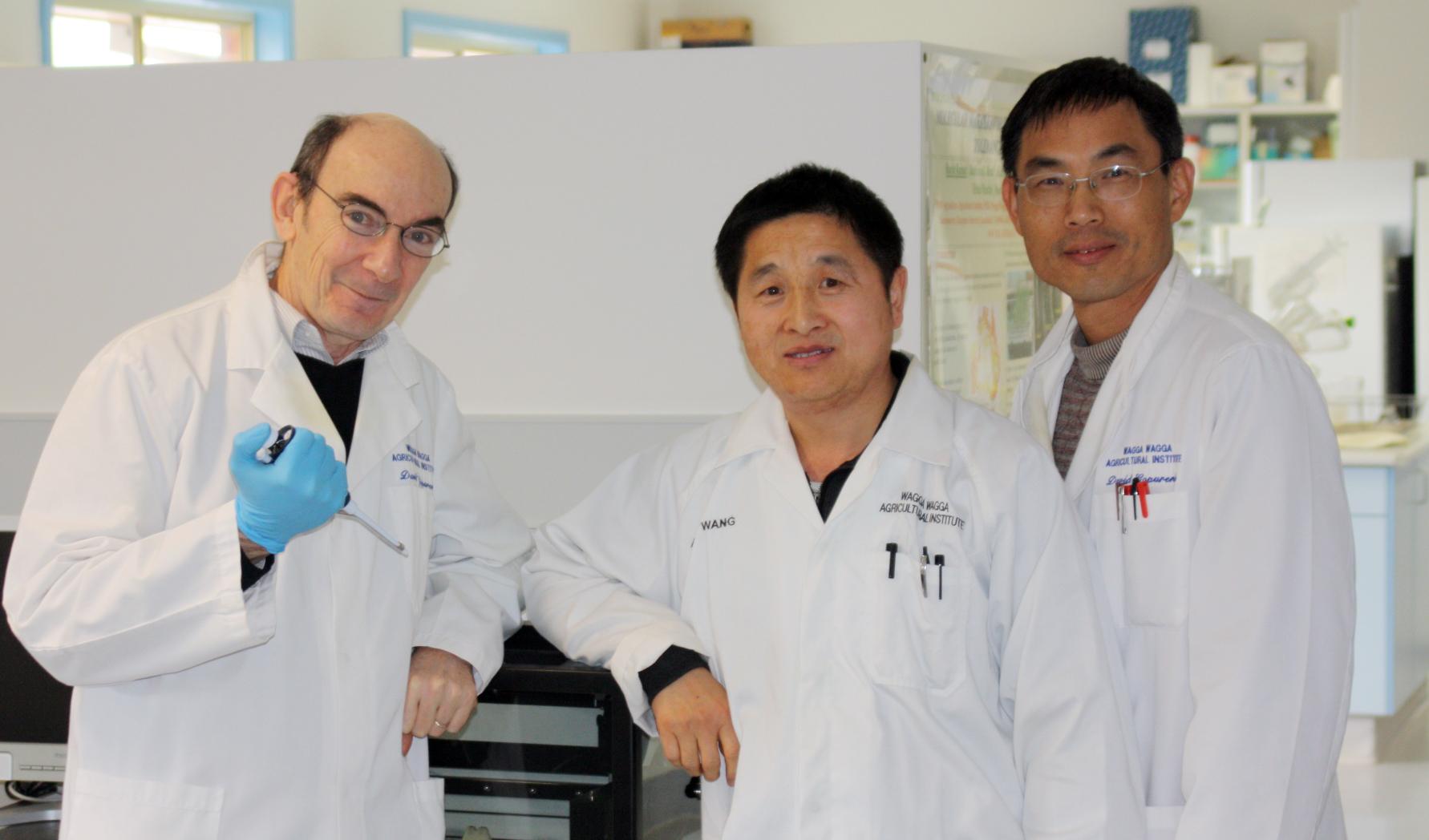 David Gopurenko, Aisuo Wang and Hanwen Wu