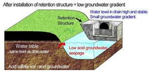 Figure 4 (above). Keeping drain water levels high can reduce groundwater gradients and greatly decrease the amount of acid groundwater seepage.