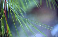 water - a precious resource
