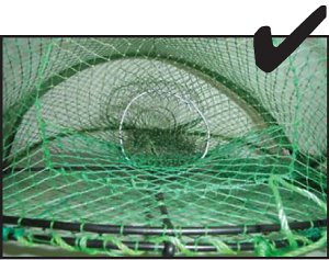 C. Thread the wire into the mesh of the yabby trap entrance funnel.