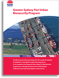Cover image of the greater sydney program document