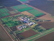 ACRI site at Narrabri