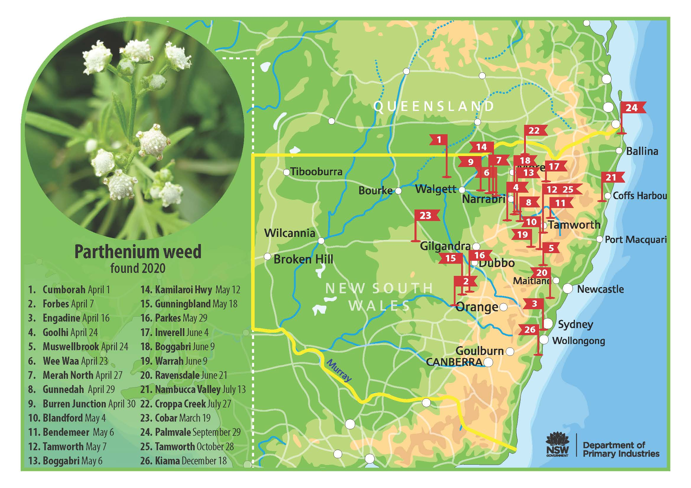 NSW Map showing locations where Parthenium weed was found in 2020