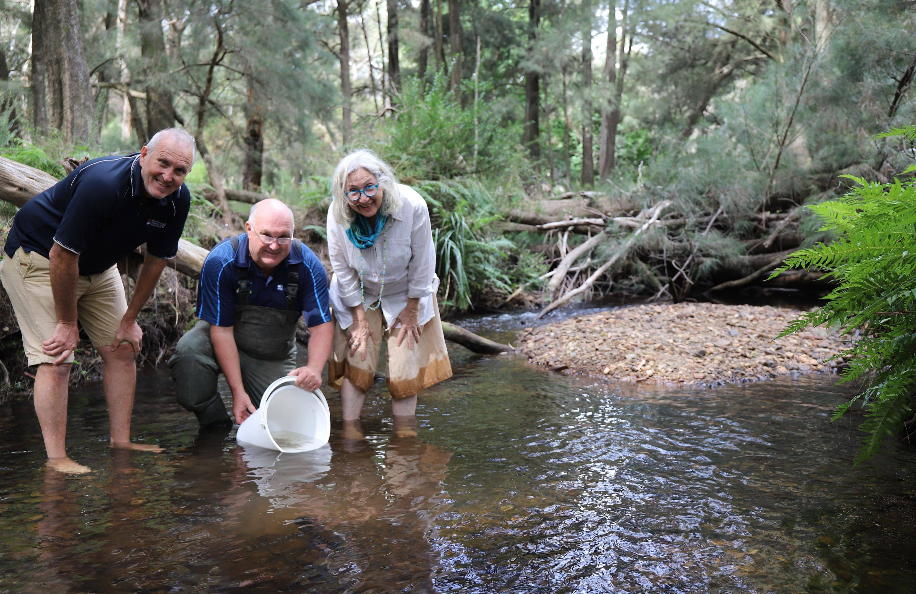 Stewart Fielder, Dean Gilligan and Abagail Elizur releasing Macquarie Perch into the Macquarie River, NSW