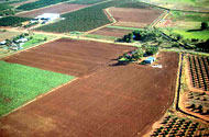 Aerial shot of fields