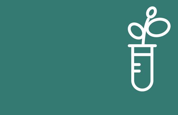 plant nutrition testing icon