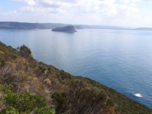 Barrenjoey Head