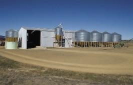 feed silos