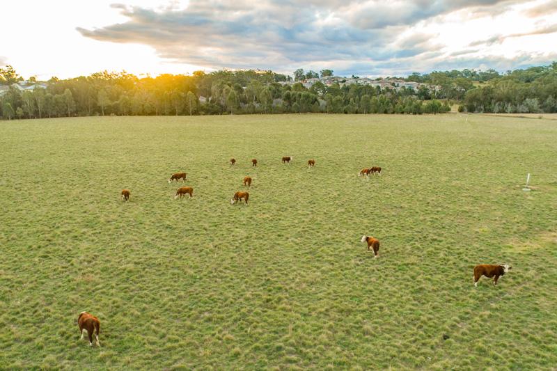 Aerial view of EMAI farm