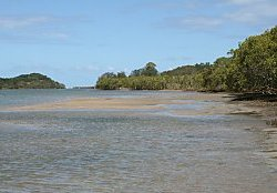Brunswick River estuary