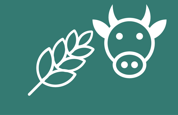 animal feed testing icon