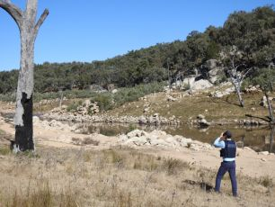 A DPI Fisheries officer on the look-out for anglers targeting Murray cod upstream of Copeton Dam