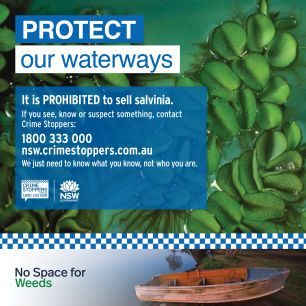 procted our waterways social media tile