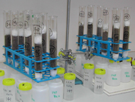 Biochar lab incubation are used for the investigation of a range of biochars in different soils in combination with other organic amendments.