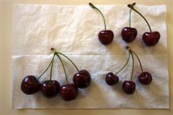 Comparison of little cherry virus diseased and non diseased fruit
