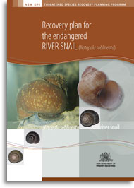 Cover of the endangered river snail recovery plan