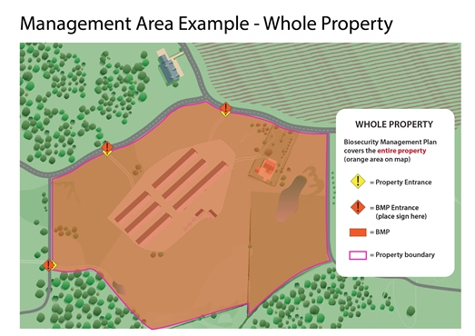 Map of management area example for whole property