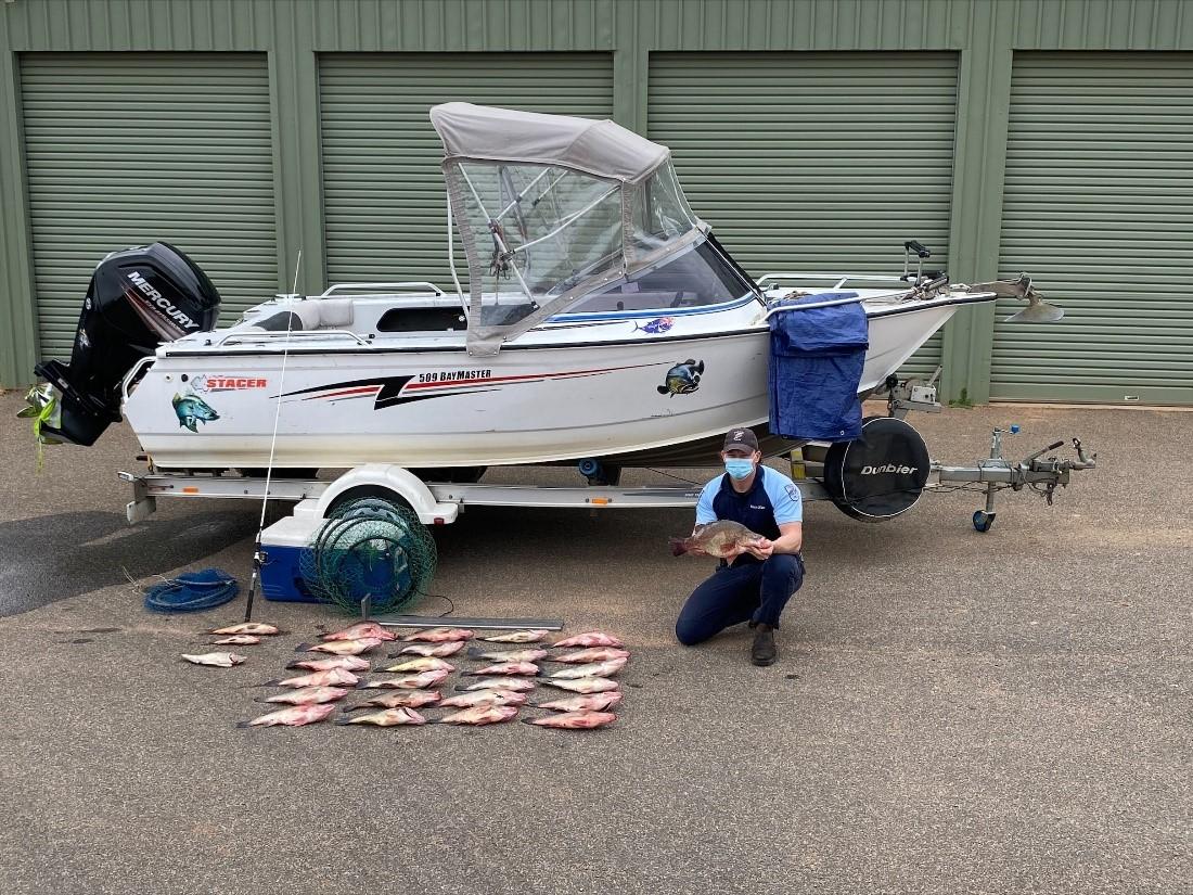 Golden Perch theft along Murray River