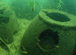 A reef ball component of an artificial reef.