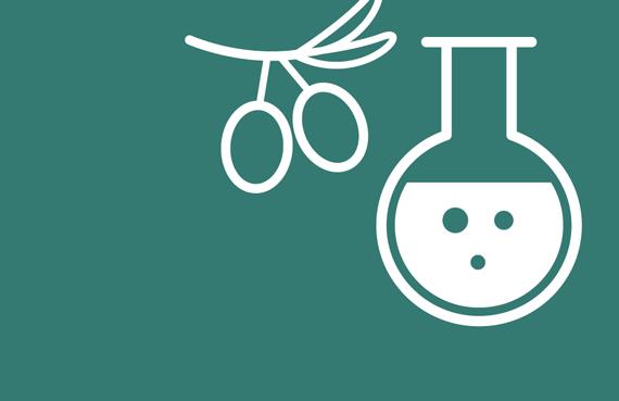 olive testing icon